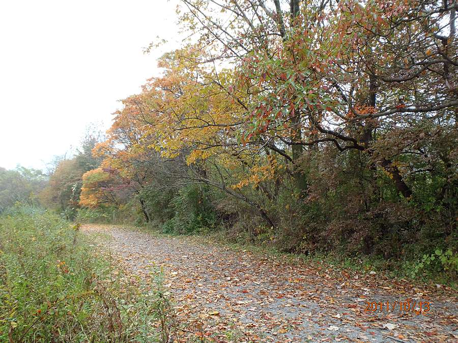 Welcome to the Merrill Creek Environmental Preserve